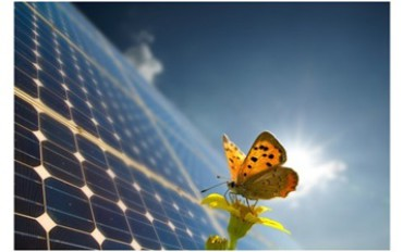 Hanwha SolarOne panels: the important carbon emission assessment