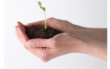 Imposte verdi: solo l'1% viene destinato alla protezione ambientale