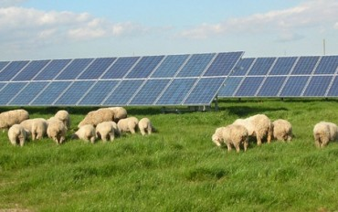 SolarEdge in Agricultural Installations